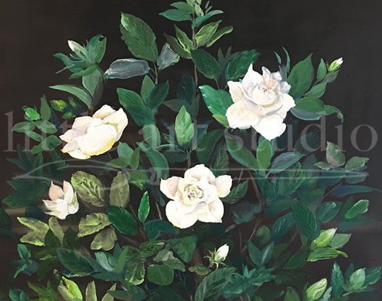 White Flowers on Black Canvas